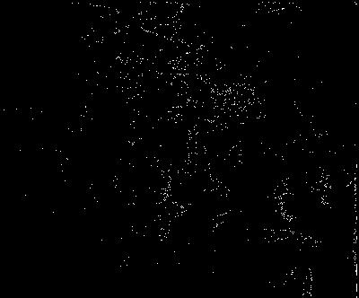 Pallade Atena nasce dalla testa di Zeus - incisione su lastra di rame - 1618