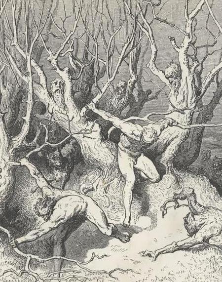 Illustrazione del canto XIII dell'Inferno di dante Alighieri