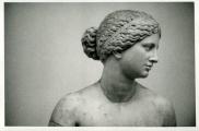 <h5>Afrodite Cnidia</h5>